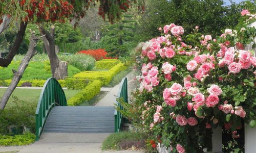 rose-garden-chandigarh-500x300