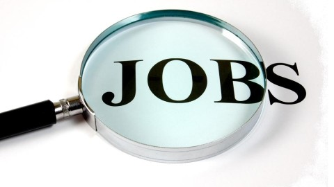 Government May Going To Offer 1.13 Lakh Jobs