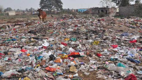Need To Clean Garbage Near International Airport