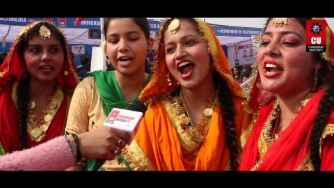 Detail of Chandigarh University Fest 2017