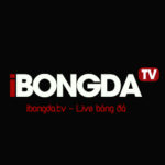 Profile picture of Xem ibongda