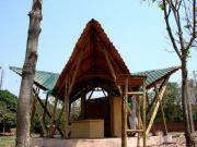 bamboo-valey