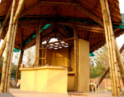 bamboo-valey2