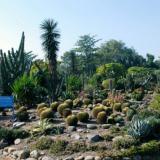 botanical-garden3