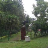 botanical-garden9