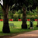 Garden-of-fragnance