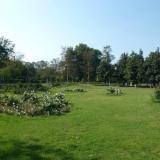 chandigarh-rose-garden