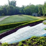 266289-visit-chandigarh-rose-garden